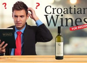 Croatian Wine for Beginners!