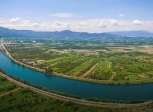 Neretva – vineyards at the river's delta