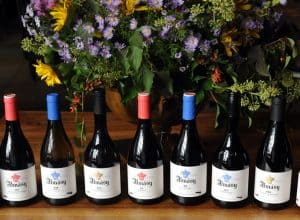 Wine Without Borders – The Almasy Collection