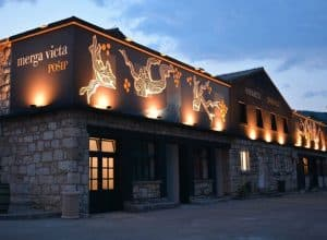 Black Island Winery – Renaissance of Pošip on Smokvica